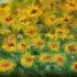 20130515172708-abstract_-_flowers