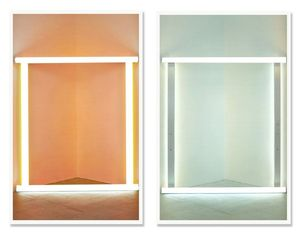 Untitled (Flavin pair), Jose Dávila