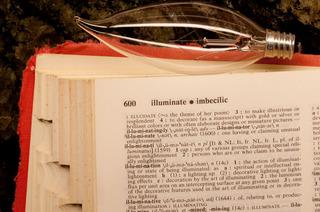 illuminate*imbecilic, Jane Szabo
