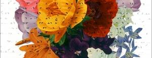 20130518084548-susan-sironi-bouquets