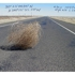 Stephan_pascher_tumbleweed_1167_126
