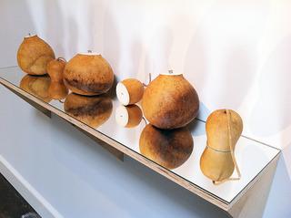 Gourds, Gabriel Martinez