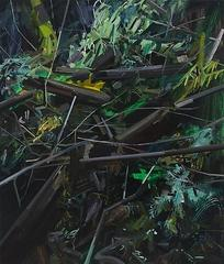 Stumps and Twigs, Claire Sherman