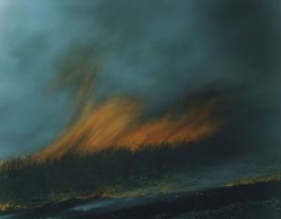 Untitled from Ametsuchi series, Rinko Kawauchi
