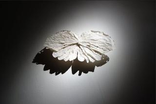 Metamorphosis , Dorothy Ding Mei Ling