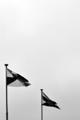 These flags have no meaning., Sonja Hornung