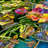20130616052212-fountain_lillies_paint