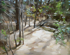 20130620150123-trail-new