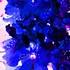 20130620204944-light__18_