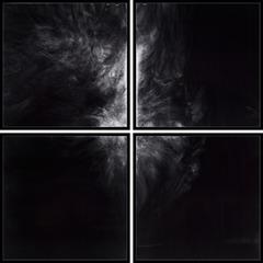 I.O.P. I.E.D. Quartet, Jesse Kauppila