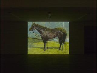 Horse , John Stezaker