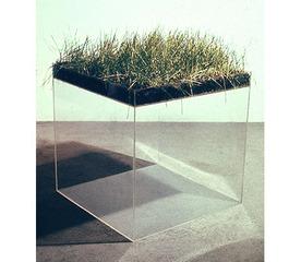 \'Grass Cube\' , Hans Haacke