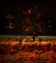 Telltale (Fire 1), Stephanie Washburn