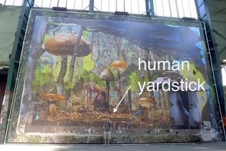 installation view (with model) of Mushroom Hunter, Chris Martin