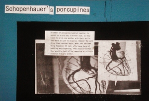 20130722085939-schopenhauer_s_porcupines__06__-_tecnica_mista_su_mdf__20x29cm__2013