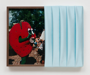 Untitled (Strawberry), Elad Lassry