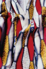 Silken Dreams #6, Miyako Ishiuchi