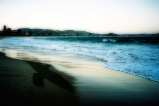 Ravensea, Sandra McArthur