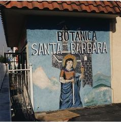 Botanica Santa Barbara, Thomas McGovern