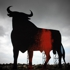 Bullfightiing