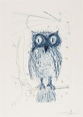 Owl, Salvador Dalí