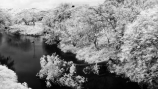 Pueblito Dam, Miguel Amat