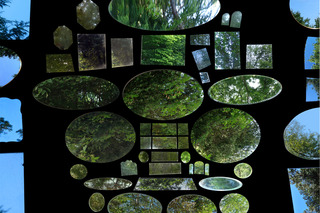 Internet Mirrors (Forest No. 2), Laura Mackin