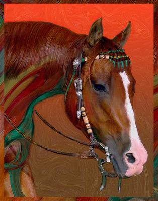 20130901181346-vito-horse-me-new2d