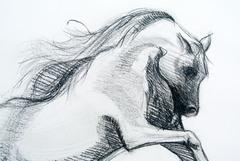 20130909173657-sketchhorsedetail
