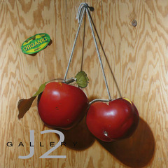Organic Apples, 2005 Oil on plywood 48 x 48in., Kevork A. Cholkian