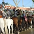 Seville_feria5