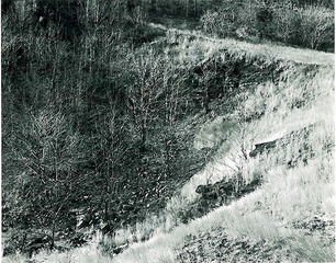 Garret Mountain , George Tice