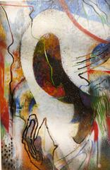Veiled Illusions , Charles Magistro