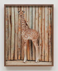 Giraffe, 60513, Elad Lassry