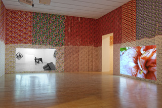 I Am Intact and I Don\'t Care, Installation view at Lyon Biennial ,Lili Reynaud-Dewar