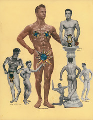 Unknown (Strength and Health collage), Harold L. Dittmer