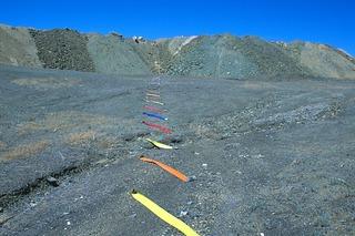 Suturing the Mine #32, Linda Gass
