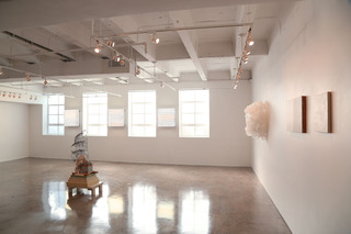 In Direct Light, Installation View, Heather Carson