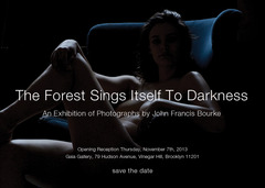 20131101231433-forestnovember7th