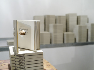 Kataklysmeg book & sculpture, Ingri Haraldsen