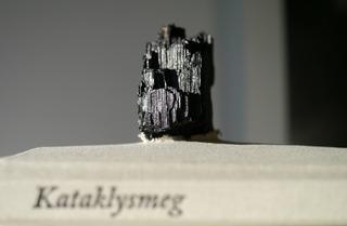 Kataklysmeg cropped, Ingri Haraldsen