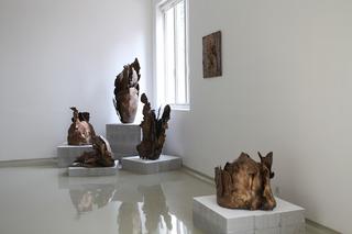 Installation View, Mrinalini Mukherjee