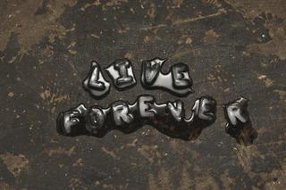 Live Forever, Tim Etchells