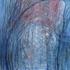 20140114110040-silvia_canton-il_giaciglio-olio_su_tela_100x100cm-2013