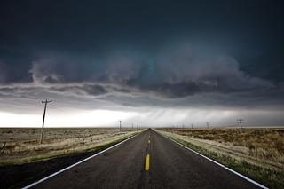 The Journey of Life, David Mayhew
