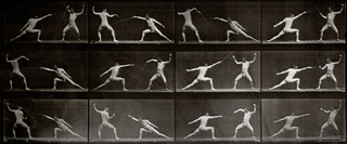 Animal Locomotion, Plate 349. Fencing, Eadweard Muybridge