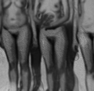 20140128184933-3-bodiesbrokishcolorxxxwb