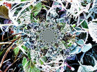serie: seasons - winter, Antoinette Luechinger
