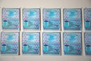 26 Passports, Michele Jaquis