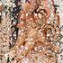 20140201231946-wallpaper_14